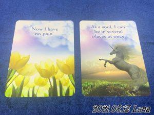 ご先祖様からのメッセージカード